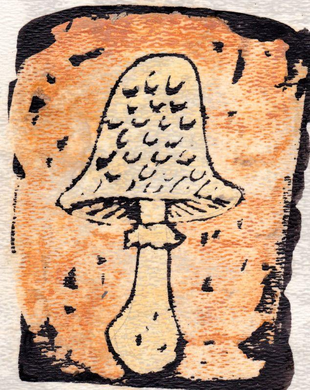 Mushroom_5