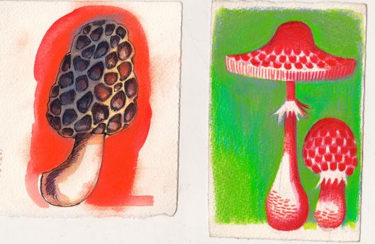Mushrooms_1