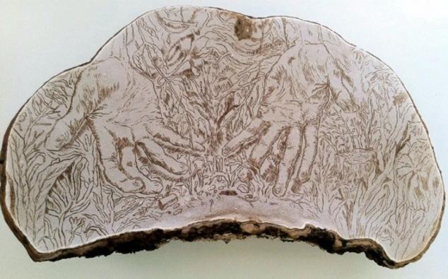 coreycorcoranfungus