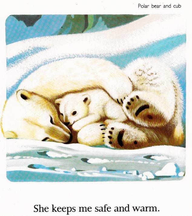 Polarbears_web