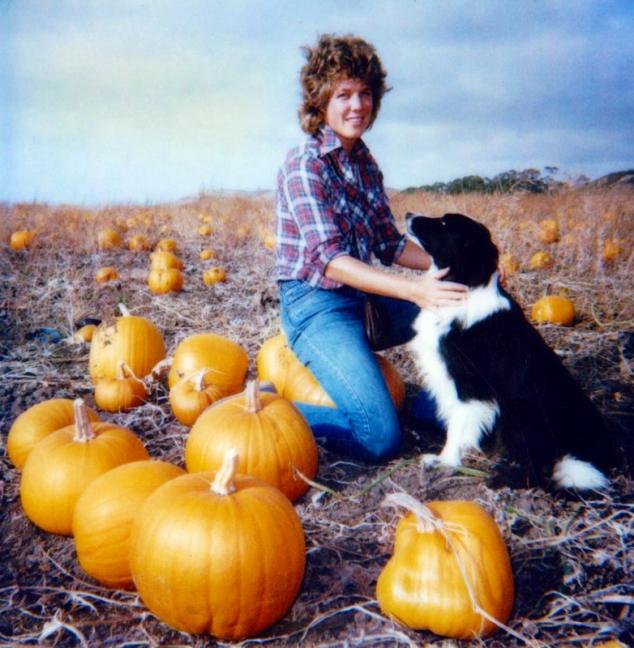 A&Pumpkin?patchweb