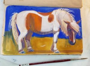 Pony_4