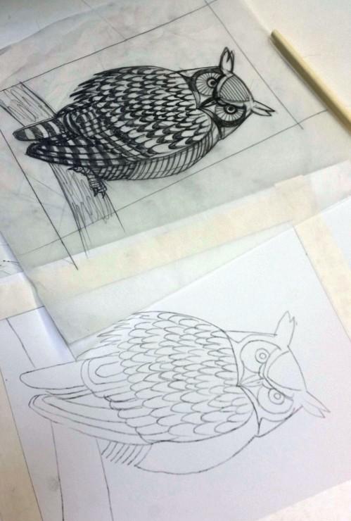 owl_3