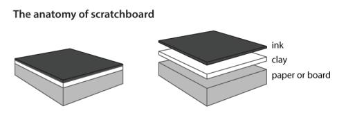 scratchboard-anatomy