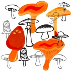 AW_mushroomscom