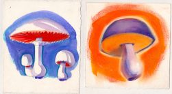 Mushrooms_2